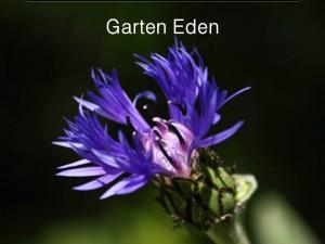 GartenEdenFolie1