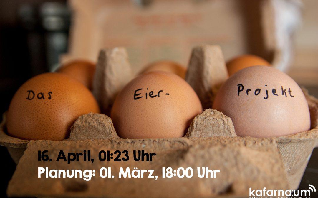 Das Eier-Projekt